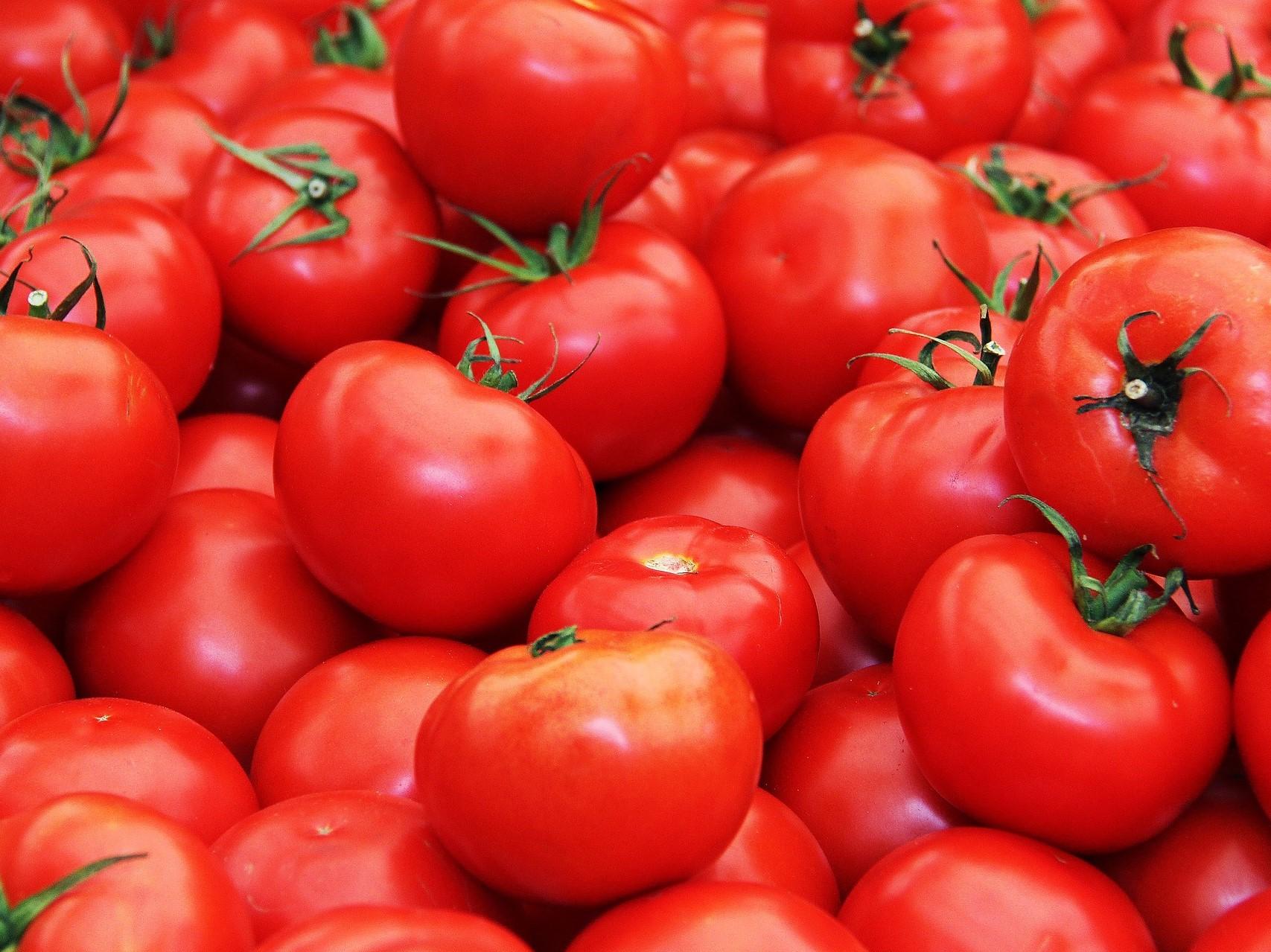 کاشت گوجه فرنگی در ناسا